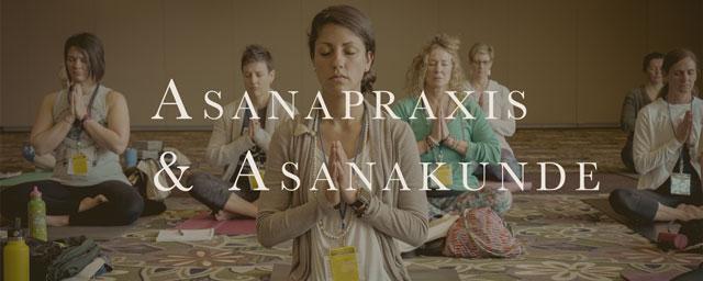 Yogalehrer Ausbildung Yana Yoga Limburg